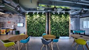 green wall office. Green Wall Office S