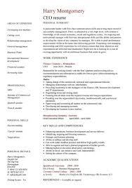 Ceo Resume Template Extraordinary Ceo Cv Funfpandroidco