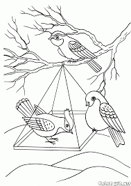 Small Picture Coloring page Birds in a feeder