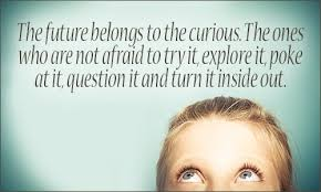 Curiosity Quotes Inspiration Curiosity Quotes