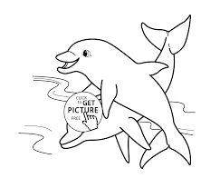 Small Picture dolphins sea animals coloring pages for kids printable free