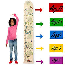 Kids Wall Wooden Growth Height Chart Hanging Ruler For