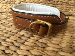 padded genuine leather dog collar d ring strong brass buckle stylish brown