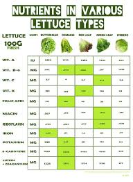 this is why iceberg lettuce has little to no nutritional value while dark romaine lettuce is full of vitamins