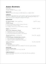 Resume Skills Examples Magnificent Resume Examples For Retail Example Skills And Abilities Summary