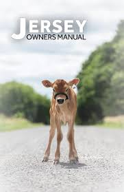 Jersey Calf Weight Chart 2019 Jersey Owners Manual By Canadian Jersey Breeder Issuu