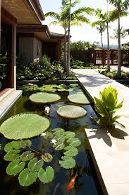 tropical outdoor lighting. hawaii koi pond design landscape tropical with stone walkway outdoor wall lights and sconces lighting
