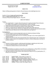 Job Skills On Resume Magnificent Gallery Of Resume Writing Employment History Full Page Job Skills
