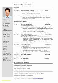 18 Elegant Hybrid Resume Template 2017 | Free Resume Ideas