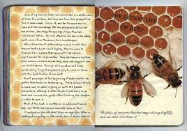 By My Hand Reading Journal Entry The Secret Life Of Bees New Quotes In The Secret Life Of Bees