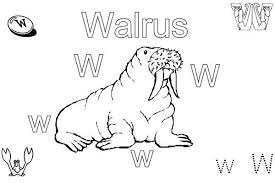 Small Picture Happy Walrus Coloring Sheet Coloring Coloring Pages