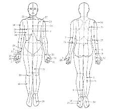 thoughts do heal (dr guiseppe joseph calligaris) men & women of Meridian Lines Body Map calligaris body meridian diagram meridian lines body map