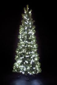 Christmas Trees B And Q