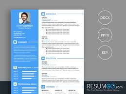 Vasilis Modern Resume Template Resumgocom