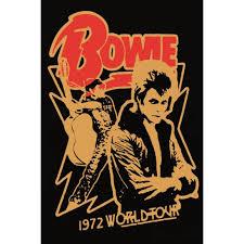 poster bowie world tour 30 x 40 cm