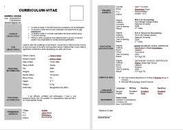 Standard Cv Double Page Sample Cv Bio Data Resume