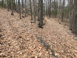Summerhaven Recreational Area, Augusta Mountain Biking Trails | Trailforks