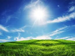 green grass blue sky.  Green Green Grass And Blue Sky Wallpaper In