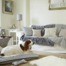 designer throws for sofas 612 best fur images on