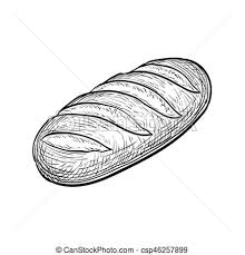 loaf of bread drawing. Brilliant Drawing Loaf Of Bread Hand Drawn Vector Illustration Isolated On White  Background Vintage Style And Of Bread Drawing D