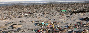 ocean by size plastic pollution piling into our oceans mcdaniel college