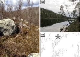Volcanic dust <b>veils</b> from sixth century tree-<b>ring</b> isotopes linked to ...
