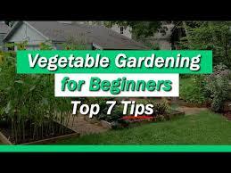 beginner gardening. Beginner Gardening E