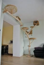 cool cat tree furniture. Real Tree Cat Cool Furniture R