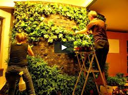 how to build a vertical garden. diy how to making of patrick blanc style green wall vertical garden on vimeo build a