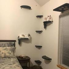 wall mounted cat furniture. Wall Mounted Cat Tree Floating Corner Lunar Collection Modern Furniture Shelves