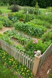 Small Picture 1715 best Garden Plans images on Pinterest Gardening Vegetable