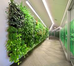 wall of plants brings natural benefits under artificial light