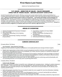 Cv For Account Manager Pr Account Manager Resume National Template Executive Cv