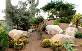 Backyard Rocks Exellent Garden Design Using Rocks With Rock Ideas Nature Exterior