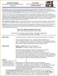 Proper Resume Format Examples