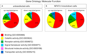 Cells Free Full Text Gene Expression Profiling Of Nfatc1