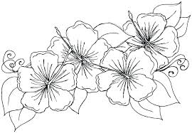 Flowers Coloring Pages For Preschoolers Coloring Source Kids