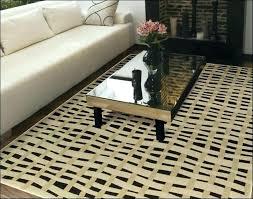 outdoor rug 10 x 14 area rugs modern contemporary as indoor carpet
