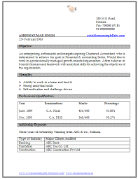 doc cv format download