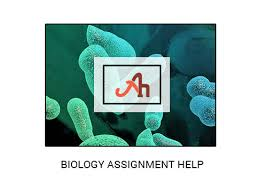 biology assignment help homework help in usa uk