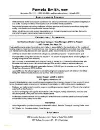 Resume Writing Services Nyc Lovely Awesome Collection Executive