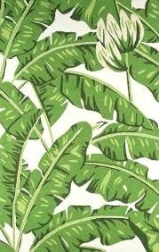 palm tree outdoor rug tropical indoor green