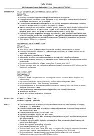 Gis Consultant Sample Resume GIS Consultant Resume Samples Velvet Jobs 1