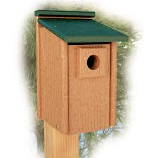 woodlink ggbb going green recycled plastic bluebird house