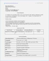 Resume Format 1 Year Experienced Software Engineer Resume Format