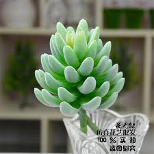 artificial plants for office decor. Artificial Succulents Plants Plastic Green Fake Leaves Garden Decor Home Office Christmas Decorations For Home-in \u0026 Dried