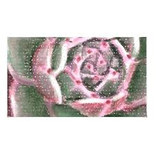 dusty rose fur rug by rugs oriental fluffy blush pink area inspiring for nursery regarding pale