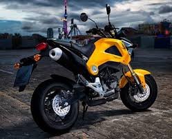 Already On Sale The Honda Msx125 A Great Little Bike New Sports