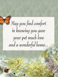 sympathy card pet dog passed away condolences pet loss sympathy cards pet sympathy