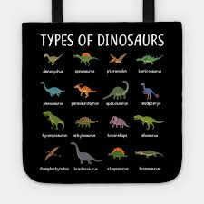Kids Types Of Dinosaurs T Shirt Dino Identification Tee